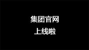 官网上线宣传片